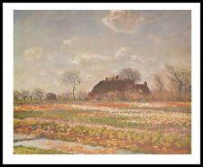 Claude Monet Tulips at Sassenheim Poster Kunstdruck Bild mit Alu Rahmen 56x71cm