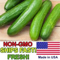 Spacemaster Cucumber Seeds | Non-GMO | Fresh Vegetable Garden Seeds USA