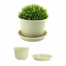 Plastic Plant Pots - Set of 10 | Pukkr