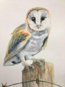ORIGINAL SIGNED A3 BIRD WATERCOLOUR PAINTING: BARN OWL