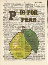 P is for Pear Fruit Alphabet Altered Art Print Upcycled Vintage Dictionary Page