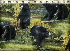 Springs ~ Realistic Black Bears & Cubs ~ 100% Cotton Quilt Sew Craft Fabric BTY