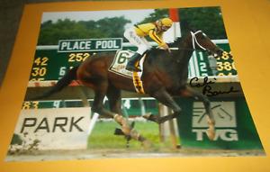 CALVIN BOREL RACHEL ALEXANDRA HASKELL INVITATIONAL 8x10 HORSE RACING PHOTO