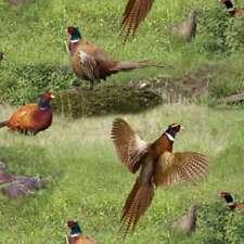 Pheasant Birds of flight Pheasant print By The yard fabric Elizabeths Studio