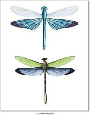 Watercolor Dragonflies Art/Canvas Print. Poster, Wall Art, Home Decor
