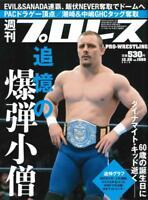 Weekly Pro Wrestling December 26, 2018 [Magazine] Japan import