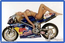 Red Bull Energy Drink Motorcycle Babe Refrigerator Magnet