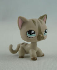 Gray Striped Short hair Cat  Star Blue Eyes Kids Toys  Littlest Pet Shop LPS238