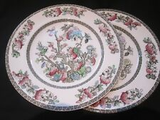 JOHNSON BROS ENGLISH IRONSTONE  PAIR OF DINNER PLATES  IN  INDIAN TREE