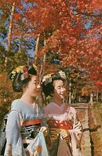 Old Photo. Japan. Maiko Girls - Fall Colors