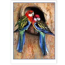 © ART - BIRD Australian Eastern Rosella Parrot Original artist print by Di