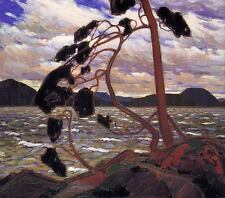 The Group of Seven Tom Thomson The West Wind Oil Painting Canvas Print 20''x24''