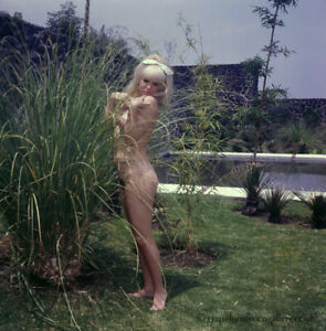 Bunny Yeager Estate 1966 Color Transparency Photograph Nude Model In Mexico Hot!