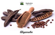 Algarrobo - Ceratonia siliqua - 50 semillas - Seeds