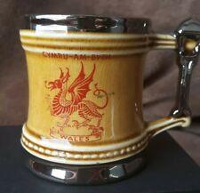 Vintage Cymru Am Byth Wales Dragon Mini Stein Tankard