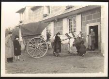 PETITE PHOTO NON LOCALISEE ATTELAGE AVEC CHEVAL CALECHE 1942