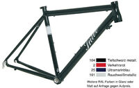 Intec F1 F01 Rennrad Rahmen Neu Farbwahl 48cm, 51cm, 54cm, 57cm, 60cm