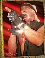 RARE VINTAGE WCW DOUBLE-SIDED POSTER HULK HOGAN & JEFF JARRETT WRESTLING TNA NWO