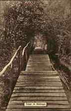 Militär Militaria Postkarte 1. Weltkrieg Treppe im Waldlager World War postcard