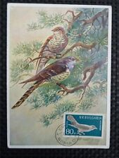 BULGARIA MK 1959 VÖGEL KUCKKUCK BIRDS MAXIMUMKARTE MAXIMUM CARD MC CM c1284
