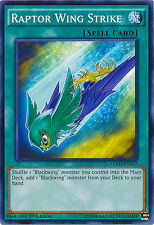 Raptor Wing Strike Spell Common Yugioh Card LC5D-EN137