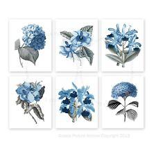 Blue Floral Botanical Illustrations set of 6 unframed Girls Room decor prints