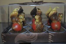 6 Teelichter Kerzen Eichhörnchen In Geschenkbox Herbst Wachs pajoma