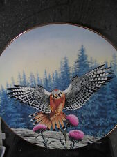 Hamilton 1988 Majesty of Flight Vantage Point Amer Kestrel Bird Ltd Ed Plate 9""