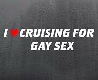 CRUISING GAY vinyl sticker funny car decal van window JDM DUB graphics bumper