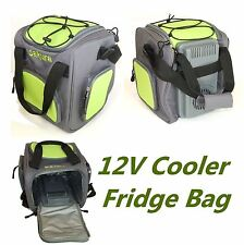 12V Insulated Electric Cooler Cool Bag 14L Food Drink Picnic