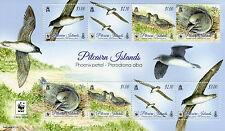Pitcairn Islands 2016 MNH Phoenix Petrel WWF 8v M/S Birds Stamps