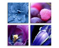 Markenlose Deko-Blumen & Gärten wandbilder