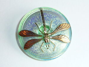 """Awesome Light Green w/ Gold Dragonfly Czech Glass Shank Button 1-5/8"""" Dragonfly"""