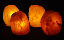 4pk BIG Natural Himalayan Salt Lamp Hand Crafted Wooden Base w/ Bulb  Crystal