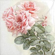 TOVAGLIOLI di carta 4x Single-VINTAGE ESTATE ROSE-per feste, decoupage
