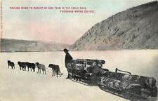 HAULING WOOD DOG SLED FAIRBANKS MINING DISTRICT ALASKA POSTCARD (c. 1910)
