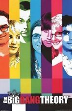 THE BIG BANG THEORY ~ SIGNAL COLOR BARS CAST ~ 22x34 TV POSTER NEW/ROLLED!