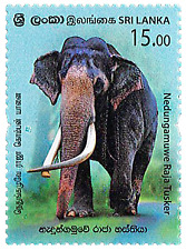Sri Lanka Stamp Raja Ceremonial Elephant Stamp 2019