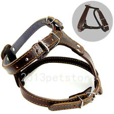 Quality Black Brown Leather Dog Harness Bully Husky Pitbull Mastiff Boxer