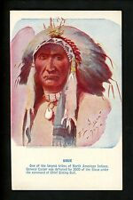 Native Americana postcard Chief Sitting Bull Sioux Indians