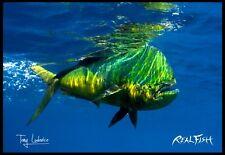 """Realfish H20 Series Mahi-Mahi """" Cruising """" Fish Mat Floor Mat Doormat 24x36"""