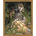 Paintworks® Wild & Free Wolves Kit & Frame Paint-by-Number Kit