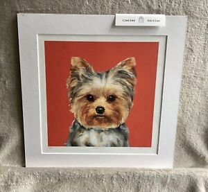 Limited Edition Yorkshire Terrier