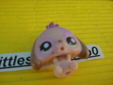 ORIGINAL Littlest Pet Shop 2626 Dachshun cutest Pets Baby .