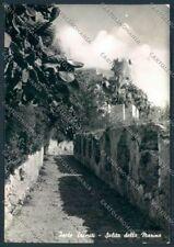 Campobasso Tremiti FG foto cartolina MV8872