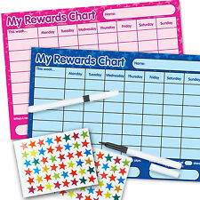 BOY GIRL TWO Re-usable Reward Chart (Inc FREE Stickers and Pen) PINK & BLUE