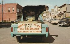 Worlds Record Black Bear Glidden Wisconsin Taxidermy Schlitz Pabst Unposted