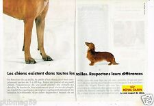 Publicité Advertising 1997 (2 pages) Aliments pour chiens Royal Canin