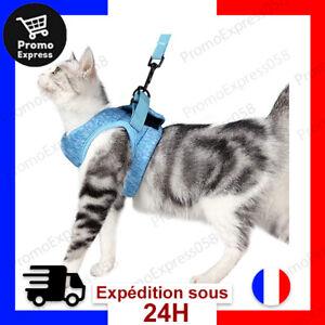 Harnais Laisse pour Chat Ultra-léger Col Chaton Doux et Confortable Veste Marche