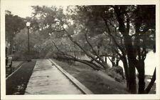 Wakefield MA Storm Damage at Lake Real Photo Postcard
